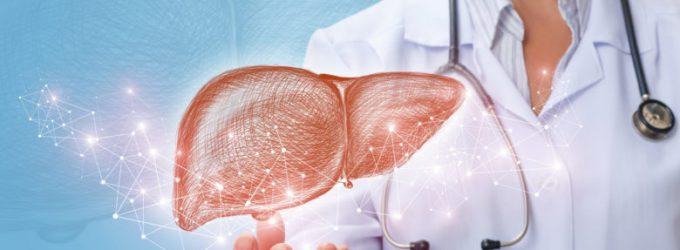 Los hígados artificiales, una posible opción para los enfermos que están esperando un trasplante
