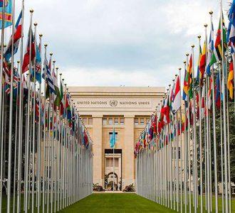 Declaración de Ginebra: Consenso  sobre el fomento de la salud de las mujeres y el fortalecimiento de la familia