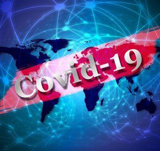 ¿Cómo pudo empezar la COVID-19?