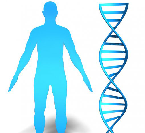 Se destinan 176 millones de dólares para estudiar el genoma humano de los africanos