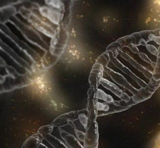 Se desarrolla un método para detectar enfermedades genéticas usando una sola célula