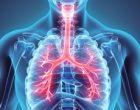 Los resultados de los trasplantes de tráquea, cada vez más positivos